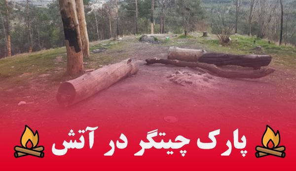 آتش در پارک چیتگر