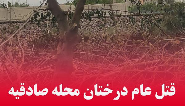 قتل عام درختان محله صادقیه