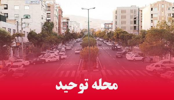 محله توحید